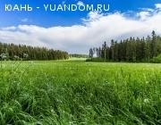 Продается земельный участок,сельхозназначение, 37 га