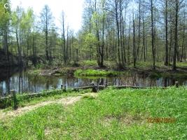 Участок 10 гектар, КФХ - ИЖС, на берегу реки.