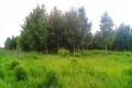 Земельный участок на берегу реки за 100 000 руб.